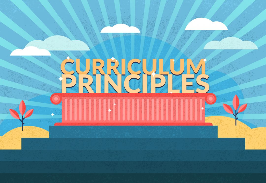 What are curriculum principles and why are they important?